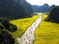 Tam Cốc, Ninh Bình: Cánh đồng lúa vào mùa đẹp nhất trong năm